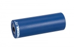 stolen Silencer Peg blue