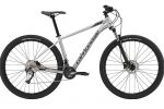 Cannondale Trail 6 2019 silver
